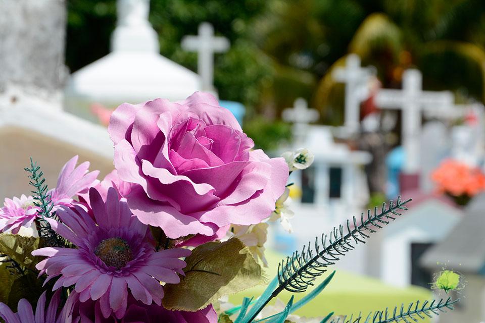 Flores Naturales para el Día de Todos los Santos - Blumenaria Taller Floral