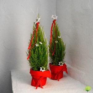 Árbol de Navidad - Blumenaria Taller Floral