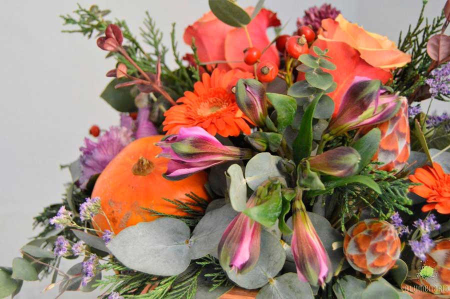 Colores Otoñales y Frutos - Día de Todos los Santos