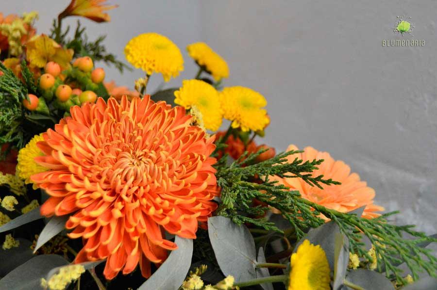 Crisantemos - Día de Todos los Santos