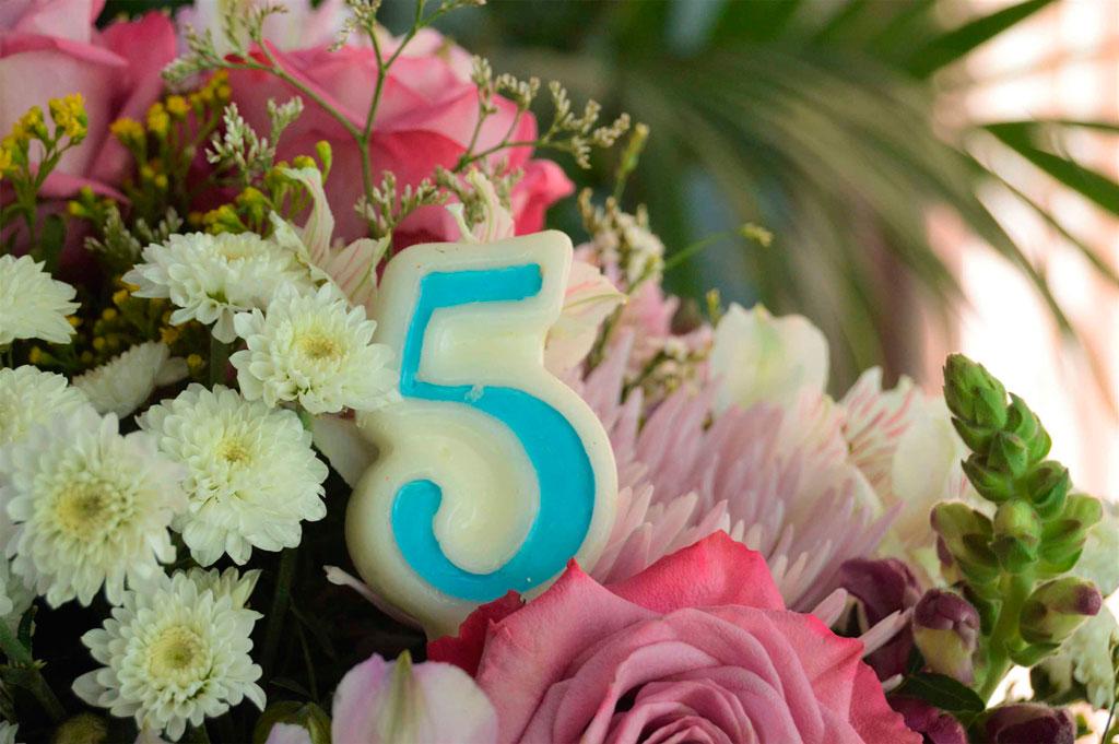 DESCUENTO 5º Aniversario Blumenaria