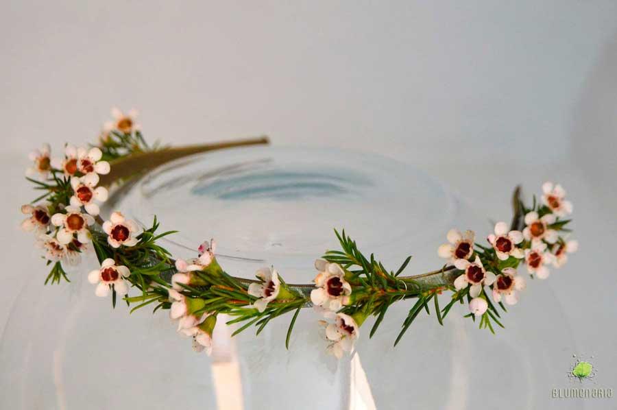 Diadema Chamelaucium - Blumenaria Taller Floral