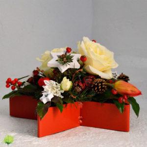 Estrella de Navidad - Blumenaria Taller Floral