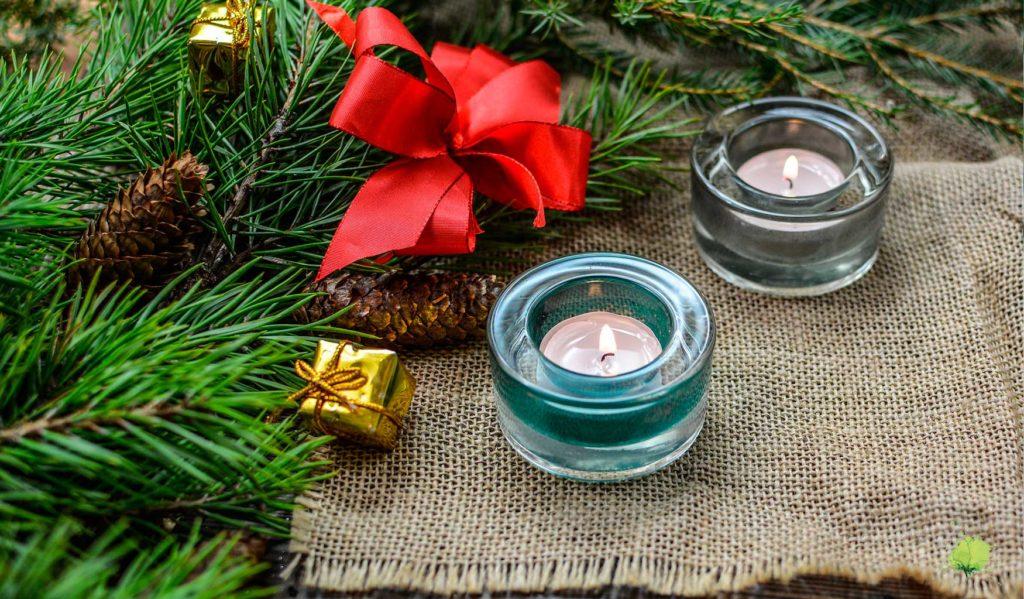 Flores para Navidad y decorar ambientes