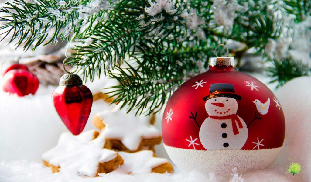 Flores para Navidad y árboles originales para decorar