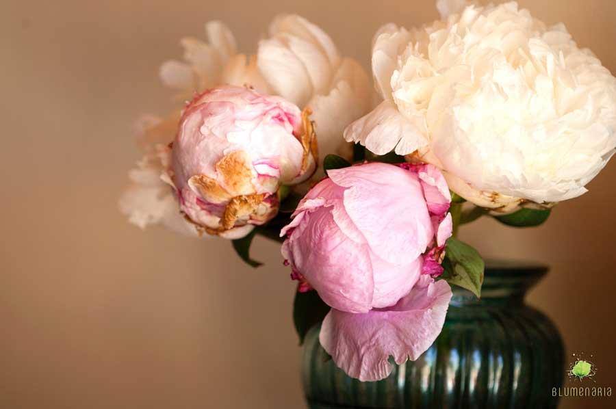 jarron-flores-blumenaria-taller-floral-1
