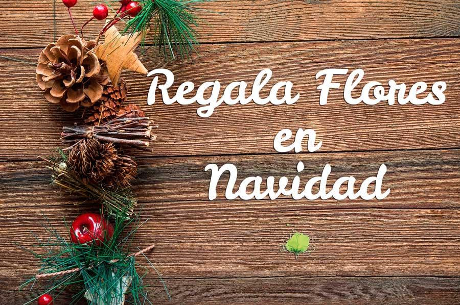 Regalar Flores Navidad - Blumenaria Taller Floral