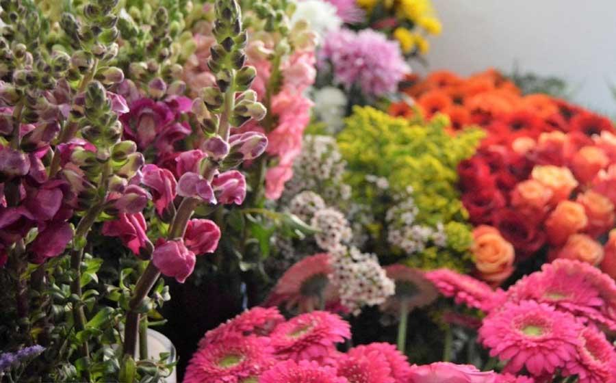 Regalate Flores Hoy - Blumenaria Taller Floral Segovia