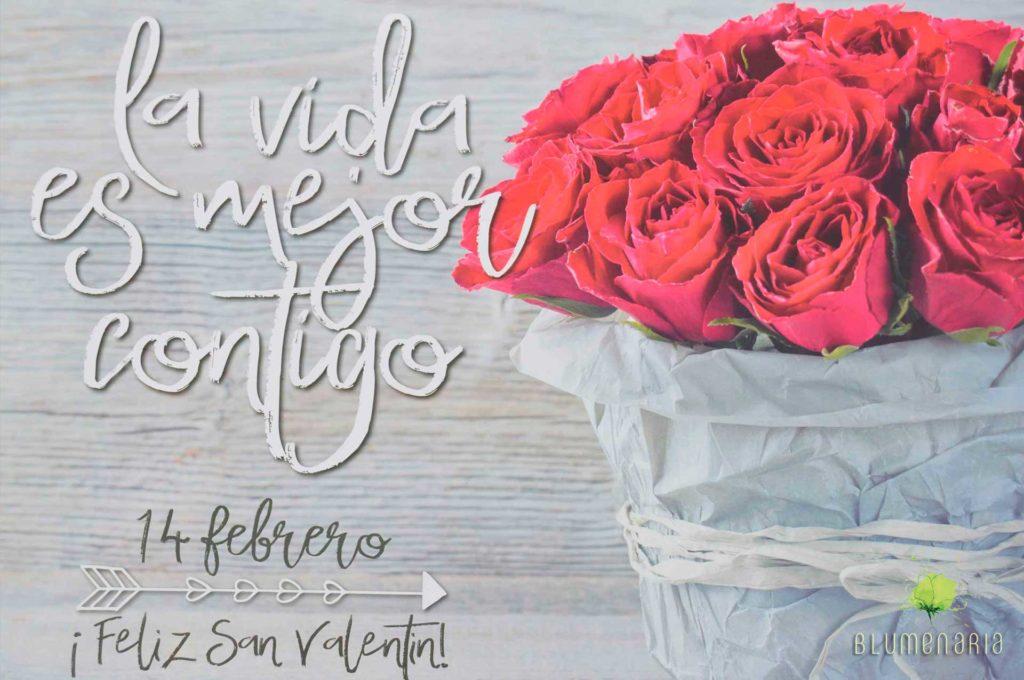 Flores San Valentín 2020 - Blumenaria Taller Floral