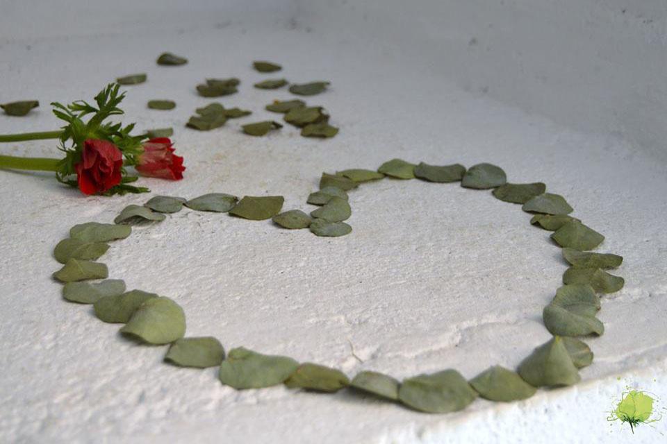San Valentín - Blumenaria Taller Floral
