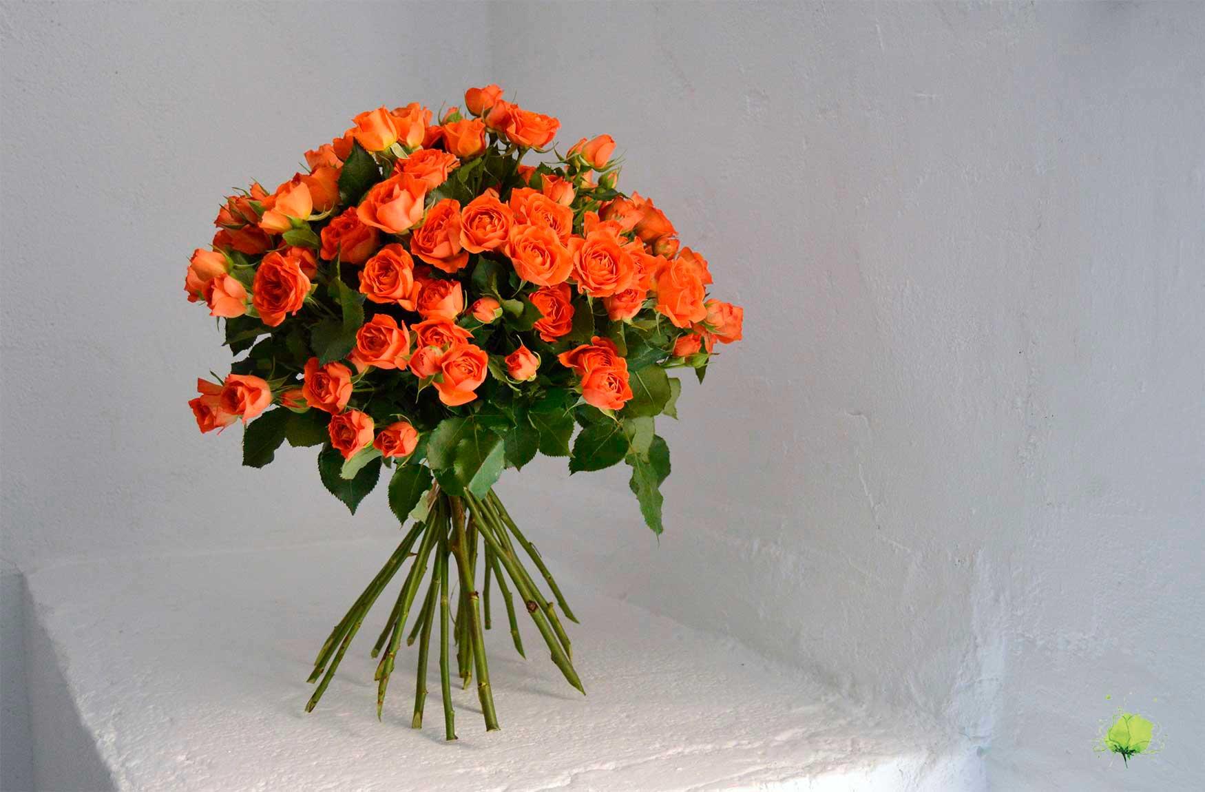 San Valentín - Enamorados - Flores Blumenaria