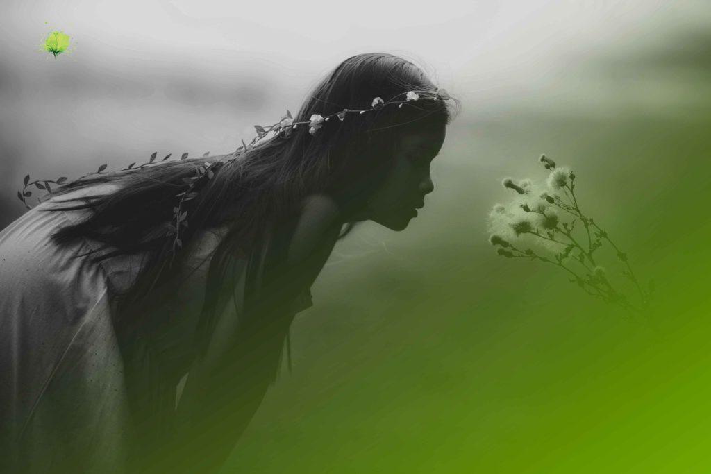 Bodas de Cuento - Blumenaria Taller Floral
