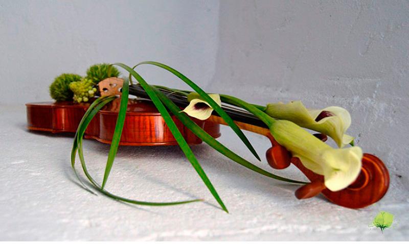 Viola y Flores - Blumenaria Taller Floral
